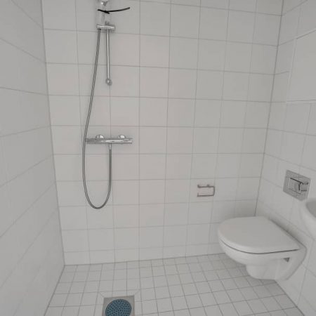 Poppelstykket_toilet.jpg